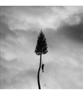 A Black Mile To The Surface-2 LP