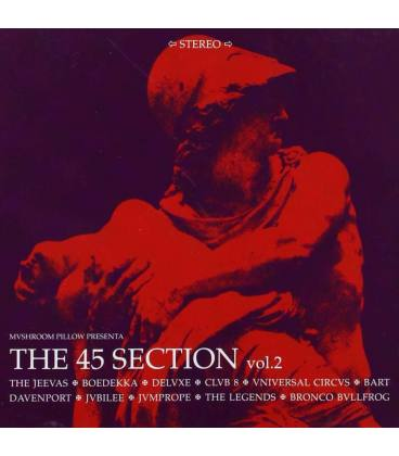 The 45 Section Vol.2-1 CD