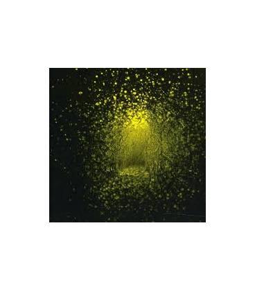 Burst Apart-1 CD