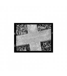Perfect Peace-1 CD