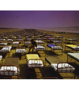 A Momentary Lapse Of Reason 2011 - Remaster-1 CD
