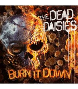 Burn It Down-1 CD DIGIPACK