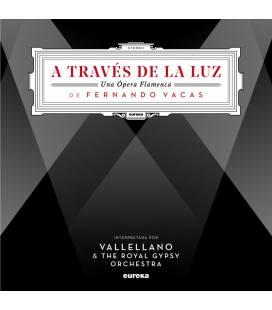 A Traves De La Luz, Una Opera Flamenca