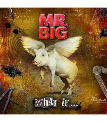 What If-1 CD