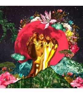 In A Galaxy (1 LP)