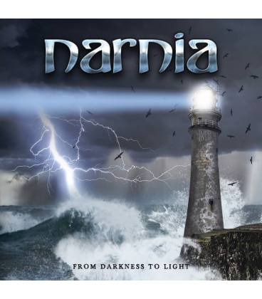 From Darkness To Light (1 LP Black)