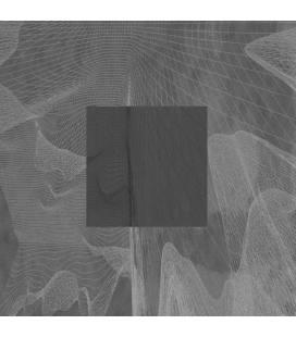 "LP 5_Rmxs (1 LP 12"")"