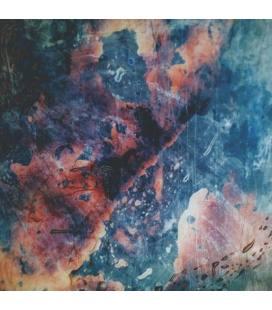 Testura (1 LP)