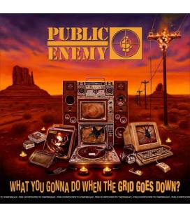 What You Gonna Do When The Grid Goes Down (1 LP)