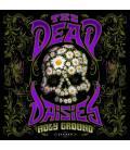 Holy Ground (1 CD)
