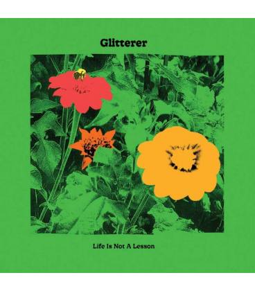 Life Is Not A Lesson (1 CD)