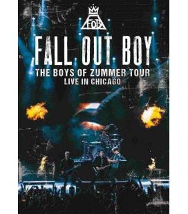 Boys Of Zummer Live In Chicago-1 DVD