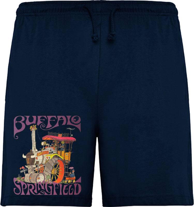 "Buffalo Springfield ""Train"""